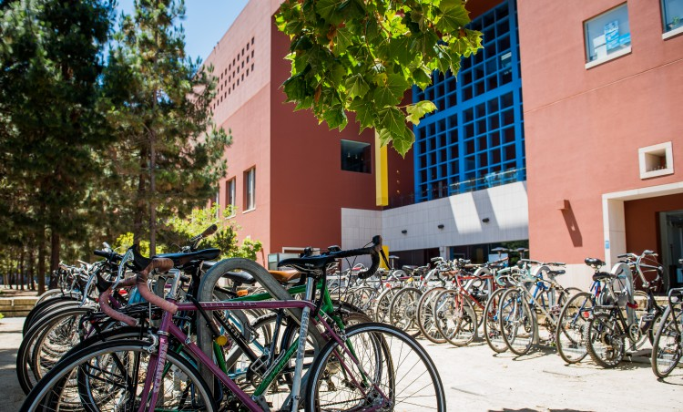 Bike_Webinar.jpg