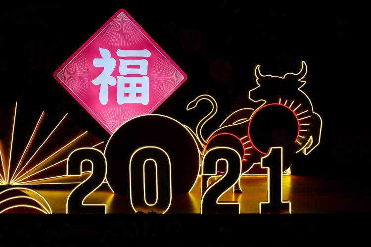 Year of the Ox Image