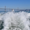 Commuter Ferry Service to Mission Bay