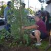 Tree Planting at Parnassus