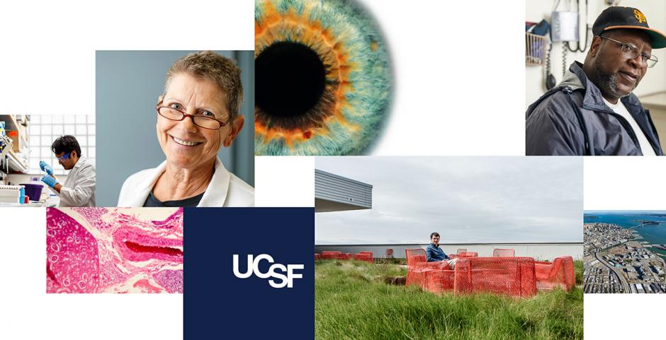 UCSF Updated Brand Identity