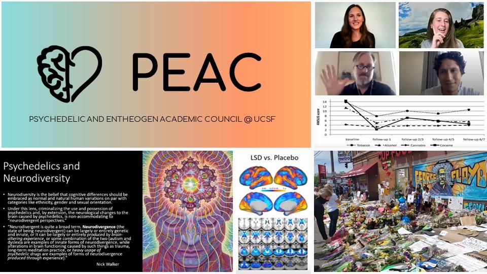 PEAC_2020.jpg