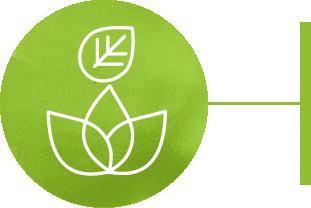 Environmental wellness icon