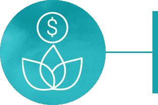 Financial wellness icon